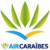 aircab-reserver-taxi-vtc-prestations-entreprises-transfert-client-particulier-aircaraibes